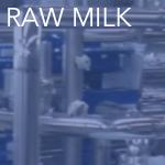 raw milk